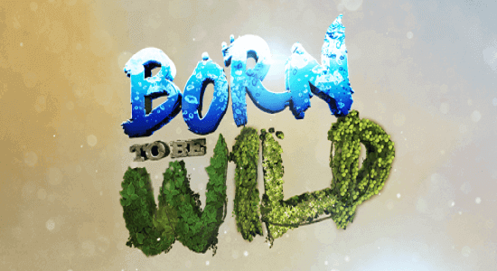 Born To Be Wild December 2, 2018 Pinoy1tv
